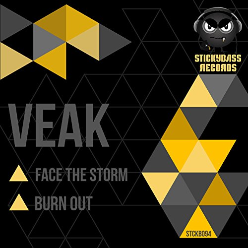 Face the Storm / Burn Out ()