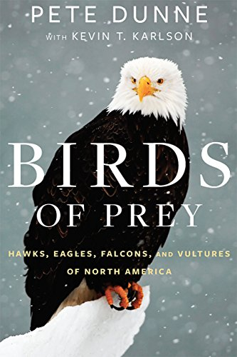 Download for free Birds of Prey: Hawks, Eagles, Falcons, and Vultures of North America