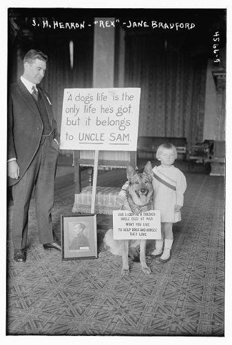 Photo: S.H. Herron,'Rex',Jane Bradford,man,dog,child,A dog's life,Uncle Sam,Bain News