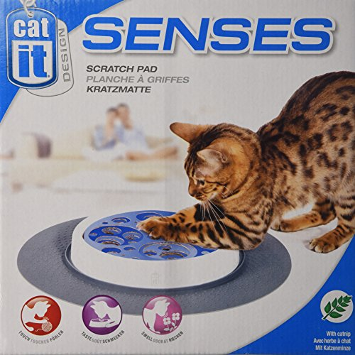 Catit Design Senses Grass Garden Kit 1x7 Buy Online In Gibraltar At Desertcart