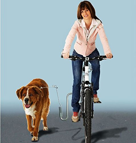 dogrunner Soporte de bicicleta para perros–con adaptador para todos los Marco kleinmetall