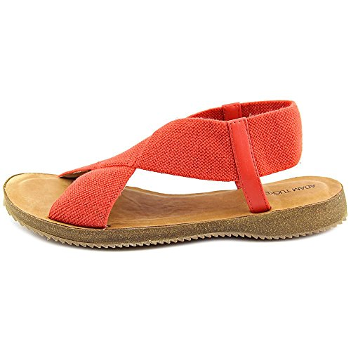 Open Slingback Fabric Poppy Toe Sandal 15 Canvas Tucker Adam Women Elastic Amora pwI0UCIq