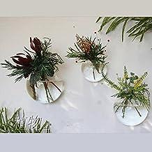 NewDreamWorld's 3PCS/set Mixed Sizes Bubble Terrariums,Indoor Wall Glass Vase,Fish Tank,Wall Plant Terrarium,Succulent Planter,Wall Air Plant Holder (Oblique opening)