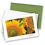Donald Verger Photography Fine Art Note Cards. Elegant - Best Reviews Guide