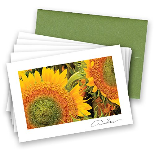 Elegant Sunflowers Note Cards. 3.5x5. Set of 8 Blank Cards with Matching Envelopes. Great Birthday Cards, Thank You Notes & Invitations. Best Quality Christmas, Mother's Day & Valentine's Day Gifts