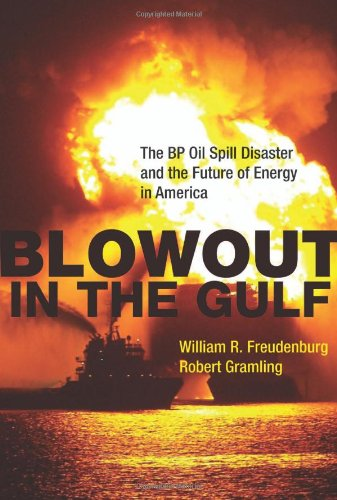 Blowout in the Gulf: The BP Oil Spill Disaster and the...