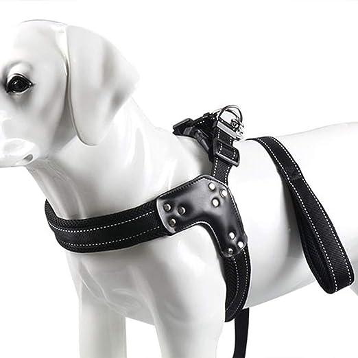 DjfLight Chaleco para Mascotas de Cuello, Arnés para Perro ...