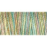 Gutermann Sulky Variegated Cotton (for Machine Embroidery) No 30 300m - 4101