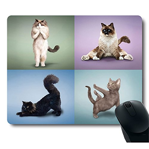 Professional Difficult Positions Customized Mouse