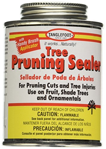 Tanglefoot Tree Pruning Sealer Can with Brush Cap ()