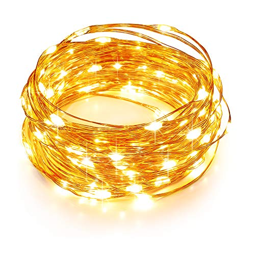 (TaoTronics LED String Lights 33ft with 100 LEDs, Waterproof Outdoor & Indoor Decorative Lights for Bedroom, Garden, Patio, Parties. UL588 and TUVus Approved ( Copper Wire Lights, Warm White ))