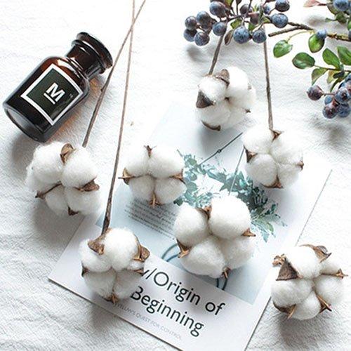 artfen 10パック人工Cotton BollワイヤIron Stem DIY Flower Arrangement小道具ホームホテルウェディングパーティー装飾約13