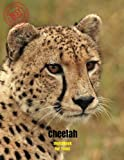 Cheetah Sketchbook for Teens: Blank Paper for