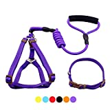 GabeFish Dog Harness Collar Leash Set Retractable Flexi Durable Wearproof Training Behavior Rope Leads With Handle Blue X-Small