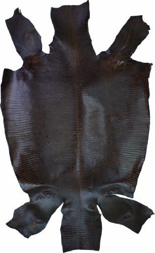 (Springfield Leather Company's Exotic Lizard Skin, Dark Brown)