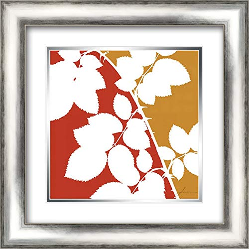 Split Stem IV 20x20 Silver Contemporary Wood Framed and Double Matted Art Print by Burghardt, ()