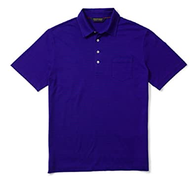 ac0836f6 Ralph Lauren Men's Polo Golf Shirt - Classic Fit Pima Cotton - Purple/Blue