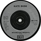 Wuthering Heights - Injection Moulded
