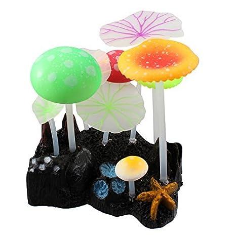 Pecera raíz de loto Hojas coralino del acuario de plantas que brilla ornamento: Amazon.es: Productos para mascotas