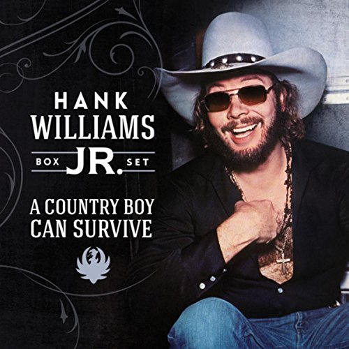 Hank Williams Jr Young