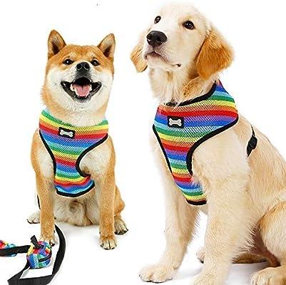 GBX Salga a dar un paseo y entrene Correa para mascotas Cofre ...
