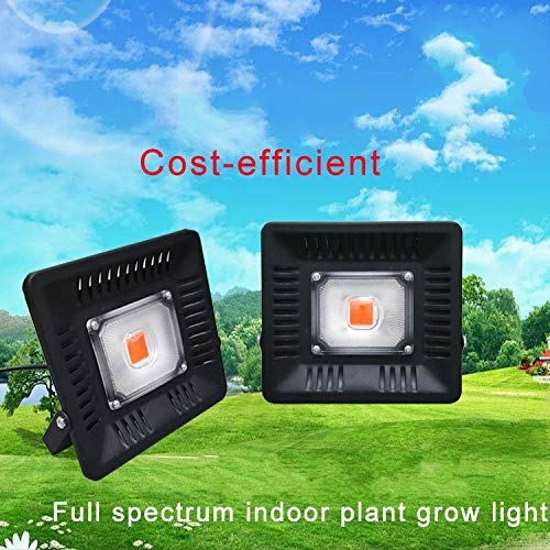 Outdoor Grow Lamp in US - 7