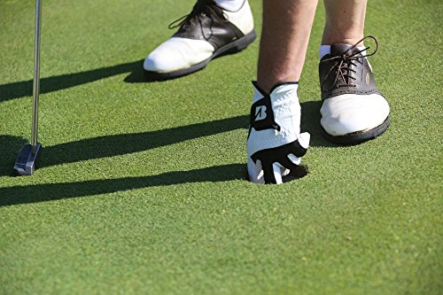 Laminated 36x24 inches Poster: Golf Putting Green Hole Lifestyle Golf Ball Sport Golf Shoe Golf Glove