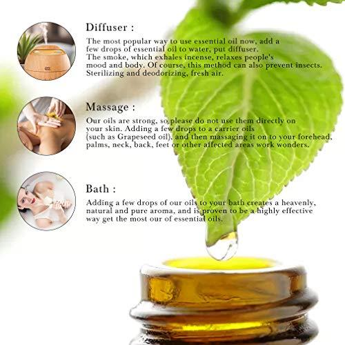 RAINBOW ABBY 6-Pack Orangic 100% Pure Essential Oil Set (Peppermint, Watermelon, Strawberry, Freesia, Citronella, Honeysuckle) 6x10ML