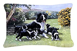 Border Collie cachorros con Momma – Tejido decorativo almohada bdba0257pw1216