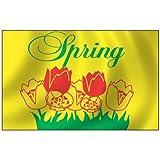 Cheap Spring Flag 3X5 Foot Nylon Outdoor