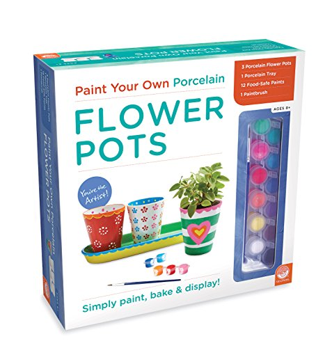 MindWare Paint Your Own Porcelain: (Flower Pot Set)