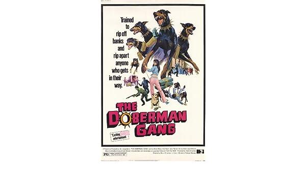 Doberman gang movie archives drgala. Com.