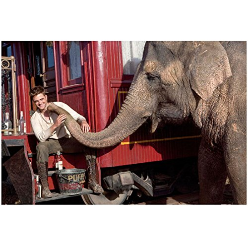 Water for Elephants 8 x 10 Photo Robert Pattinson Sitting on Caboose Steps Playing w/Tai kn