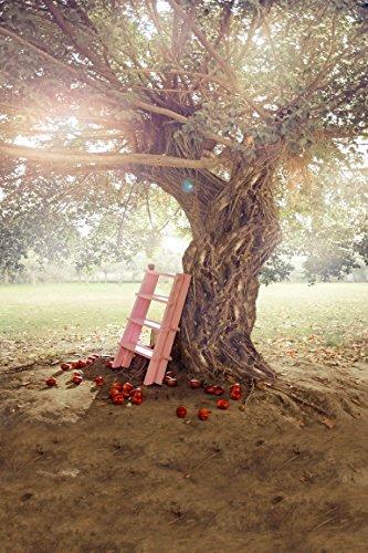 amonamour-big-fruit-tree-ladder-under-nature-scenery-mural-vinyl-photo-backgrounds-5x7ft-wedding-stu