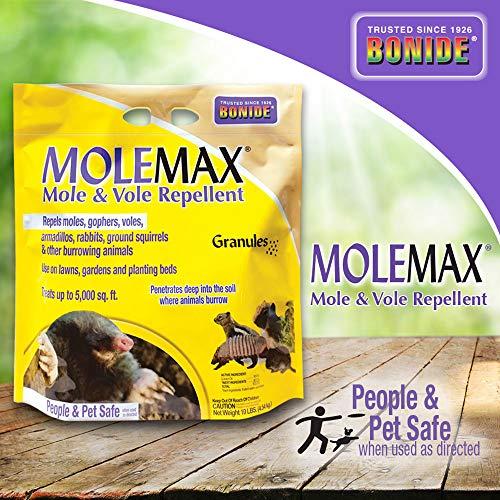 Bonide (BND692150) - Molemax Mole & Vole Burrowing Animal Repellent, Rodent Repellent Granules (10 lb.) (Best Way To Get Rid Of Ground Moles)