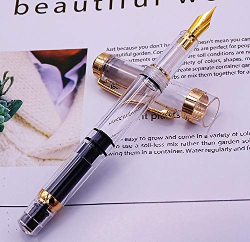 Wing Sung 698 Piston Fountain Pen Fine Nib 0.5mm - Transparent with Golden Clip