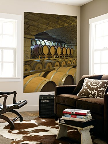 barrels-in-cellar-at-chateau-changyu-castel-shandong-province-china-wall-mural-by-janis-miglavs-48-x