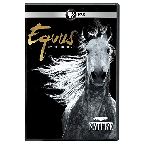 Nature Dvd - NATURE: Equus: Story of the Horse DVD
