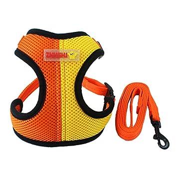 Fashionable Teacup Dog Soft Mesh Dog Walker Harness
