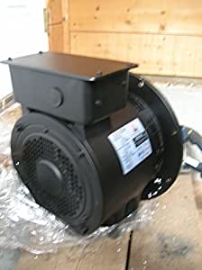 AC Generator replacement head (6kw) Light Tower