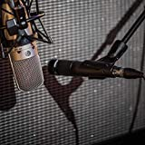 Shure Cardioid Dynamic Vocal Microphone
