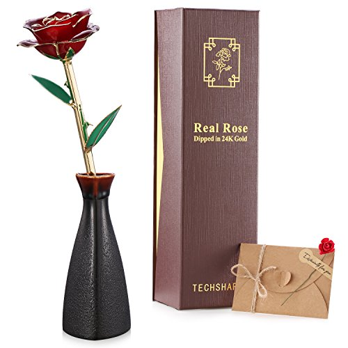 24k Gold Rose Flower Red Long Stem Real Rose Love Forever, Best Wedding Anniversary Gift, Birthday Gift for Her Women Wife Girlfriend Mother, with Handmade Porcelain Bottle Rose Greeting Card (Handmade Wedding Anniversary Cards)