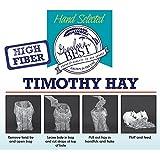 Grandpa's Best Timothy Hay Bale, 5lbs