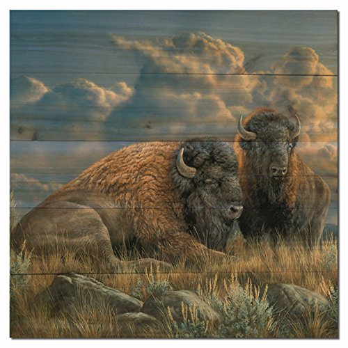 WGI Gallery WA-DTB-1212 Distant Thunder Bison Wall Art