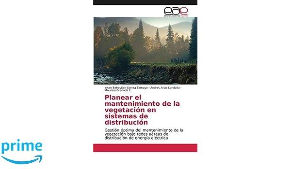 Planear el mantenimiento de la vegetación en sistemas de distribución: Gestión óptima del mantenimiento de la vegetación bajo redes aéreas de distribución ...