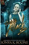 Sneak Attack 2 (Volume 2)