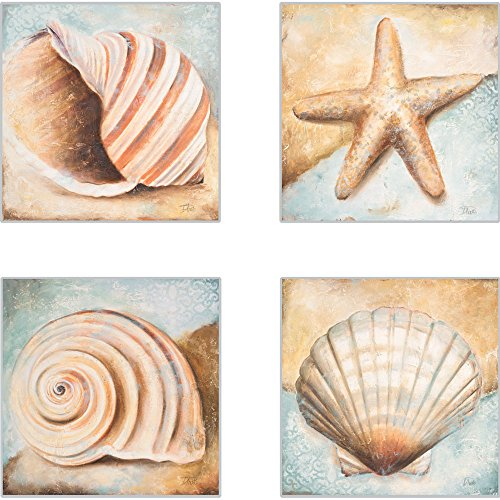 CoasterStone AS10080 Seashell Collection Absorbent Coasters, 4-1/4-Inch, Set of 4 ()