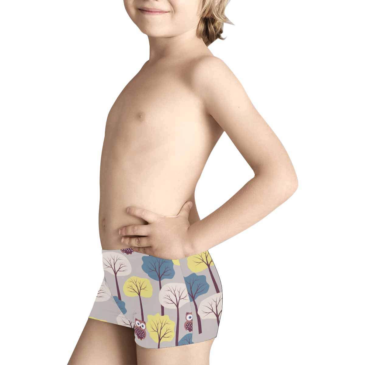 INTERESTPRINT Boys Autumn with Cute Owls Boxer Brief Underwear 5T-2XL