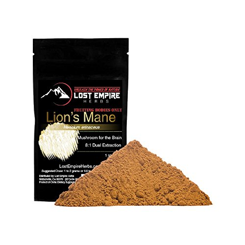 Lion's Mane Mushroom Dual Extract – Organic Nootropic Supplement – Helps Regulate Mood, Supports Brain Function, Improves Well Being, Memory Support – (30 Grams) Review