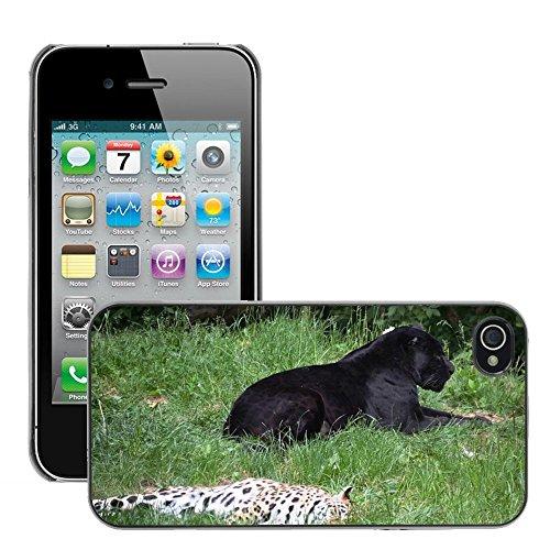 Bild Hart Handy Schwarz Schutz Case Cover Schale Etui // M00135089 Panter Leopard Tiere // Apple iPhone 4 4S 4G